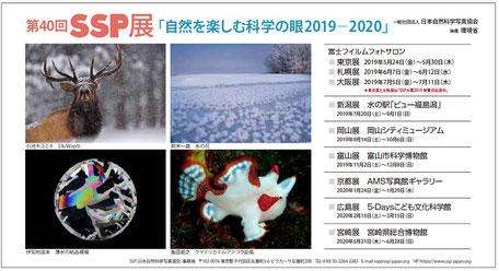 2019-2020 第40回SSP展DMハガキ