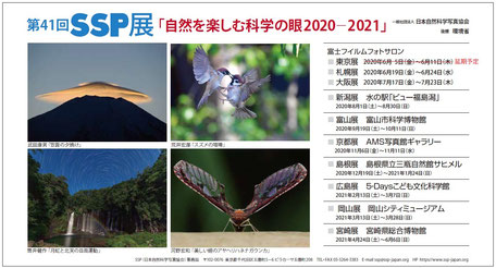 2020-2021 第41回SSP展DMハガキ