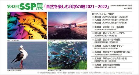 2021-2022 第42回SSP展DMハガキ