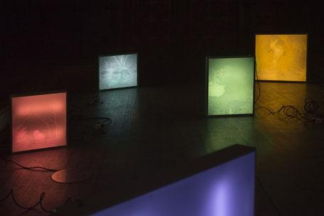 Teresa Fellinger, Evalie Wagner, neon shelter