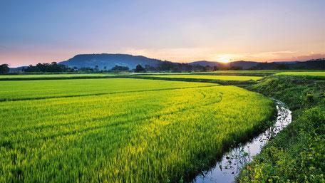 平成29年度新潟県地域づくり見本市 ~ワガゴトで地域を動かす~、地域づくりコーディネーターOJT研修成果報告