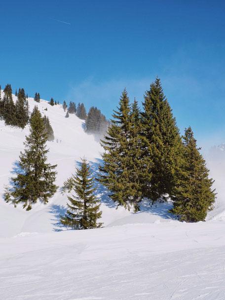 Reuttener Seilbahnen Ski Resort, Reutte, Tyrol, Austria