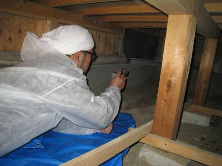 床下調査の参考写真