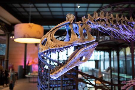 Museum über Kunst Technik Kultur und Geschichte