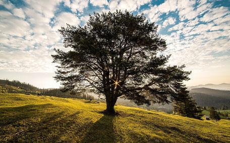 chauffage écologique - durable - lot et garonne