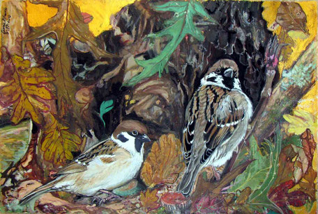 2010 : Sparrows the Call -  Gouache on paper
