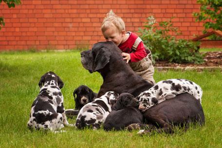 Hundezucht ist Herzenssache