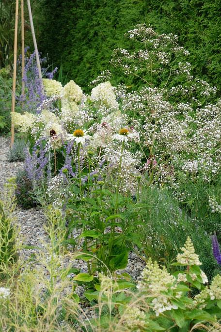 dieartigeGARDEN - Blau-Weißes Kiesbeet / Gravel garden in blue-white