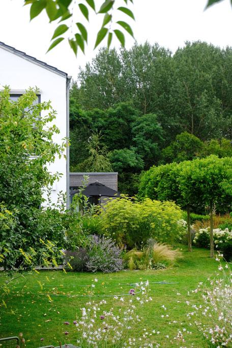 dieartigeGARDEN - Kiesbeet am Haus + Platanenreihe / gravel bed + plane tree rows