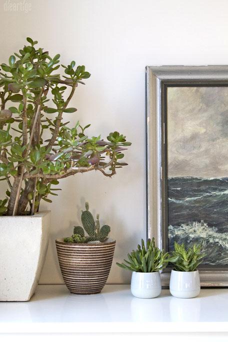 dieartigeBLOG - Grünpflanzen im Schlafzimmer | Sukkulenten + Kakteen