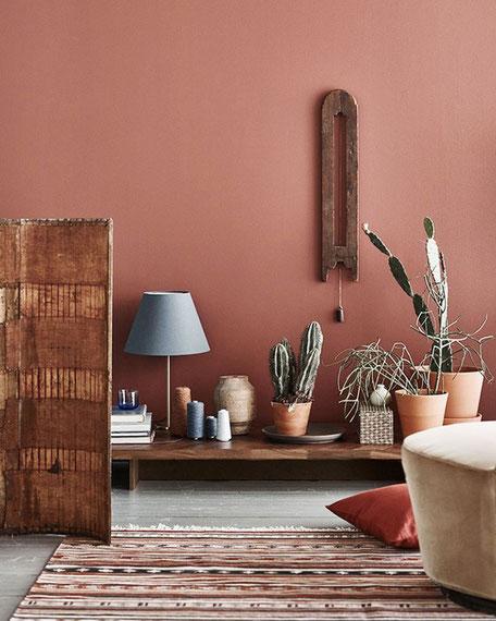 salon terracotta cactus