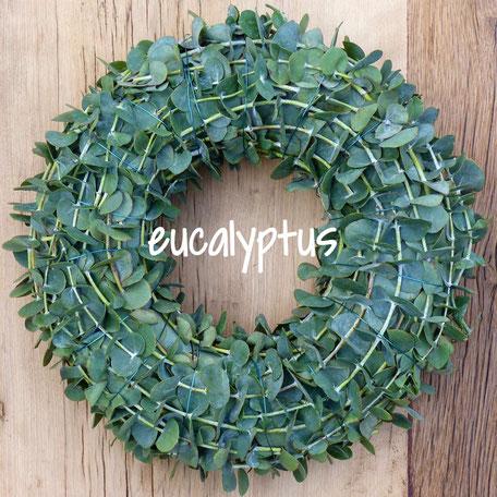 Eukalyptuskranz