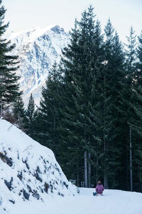 die schönsten Naturrodelbahnen in Tirol: Rodelbahn Rodlhütte, Pertisau - Achensee  #rodelbahn #tirol #alpen #karwendel #mountainhideaways