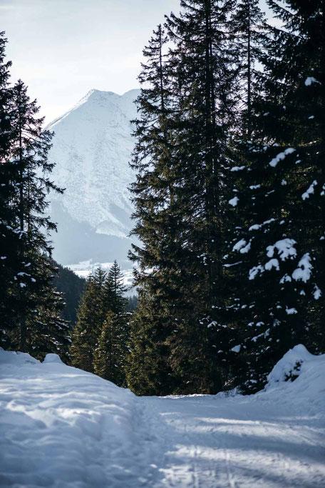 die schönsten Naturrodelbahnen in Tirol: Rodelbahn Hoher Sattel, Leutasch  #rodelbahn #tirol #alpen #karwendel #mountainhideaways