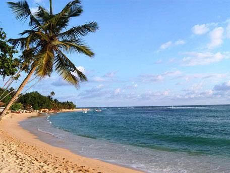 Goudgele stranden van Mirissa aan de zuidkust van Sri Lanka