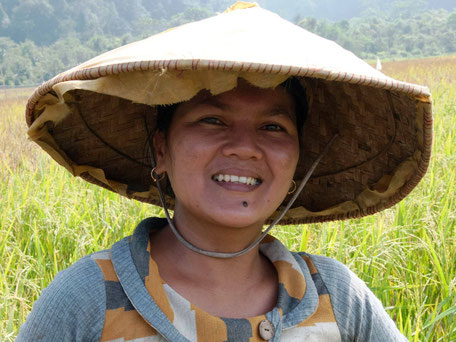Lokale rijstplukster op Java