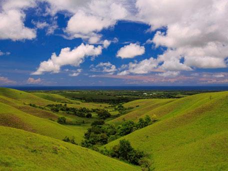 De glooiende groenbedekte heuvels van Lendongara hill