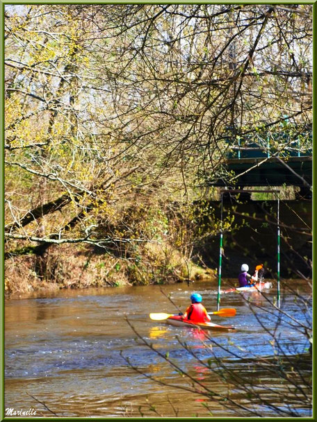 Cours de canoë sur La Leyre, Sentier du Littoral au lieu-dit Lamothe, Le Teich, Bassin d'Arcachon (33)