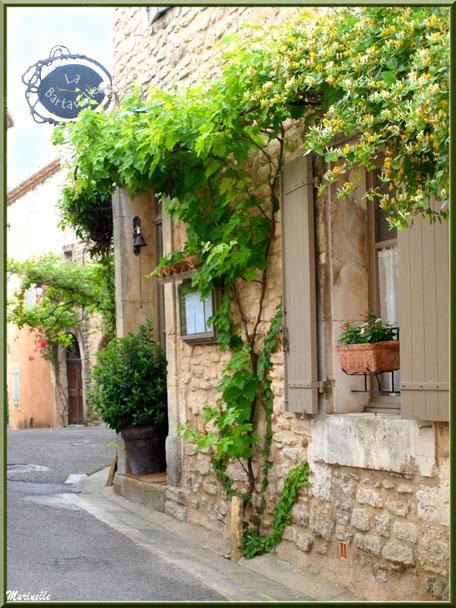 """Restaurant """"La Bartavelle"""" et sa treille - Goult, Lubéron - Vaucluse (84)"""