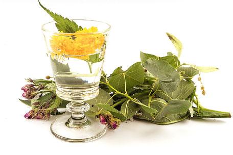 Pflanzen, Therapie, Heilkunde, etwas pflanzliches