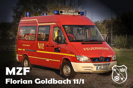 Goldbach 11/1 -MZF