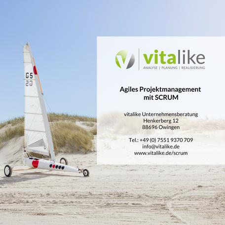 Agile Projektmanagement mit SCRUM | Management Consulting am Bodensee | Ihr Partner für Consulting am Bodensee | vitalike Unternehmensberatung