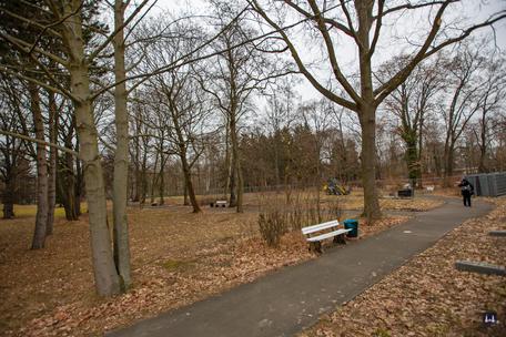 Die Kuranstalt Berolinum an der Lankwitzer Leonorenstraße. Ehem. Kurpark während der Baumfällungen.