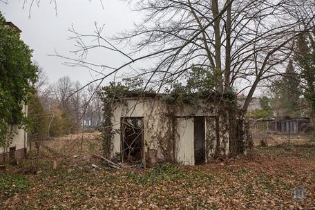 Berlin Lichtenrade Lichtenrader Damm verlassenes Haus Ruine Gartenseite Schuppen