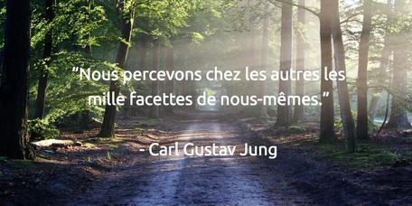 """Nous percevons chez les autres les mille facettes de nous-mêmes.""""   - Carl Gustav Jung"""