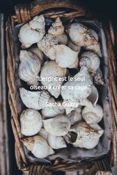 """""""L'esprit est le seul oiseau à créer sa cage.""""   - Sacha Guitry"""
