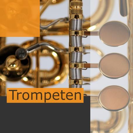 Deutsche B und C Trompeten Ricco Kühn