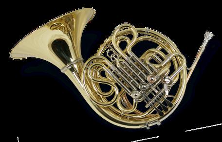 Doppelhorn Modell W 273