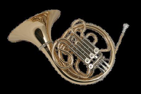 Doppelhorn Ricco Kühn Modell W 293 X
