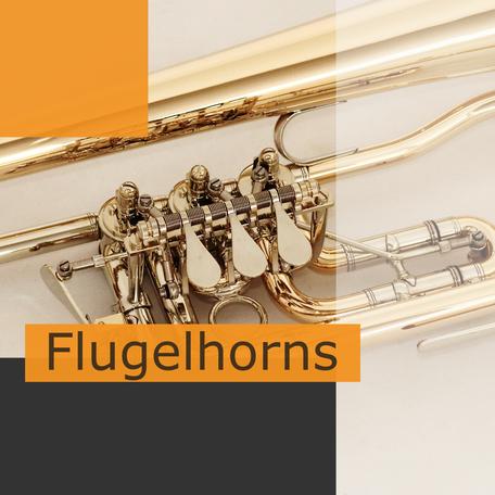 Flugelhorns by Ricco Kühn
