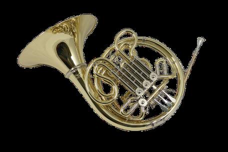 Doppelhorn Ricco Kühn Modell W 293 XS
