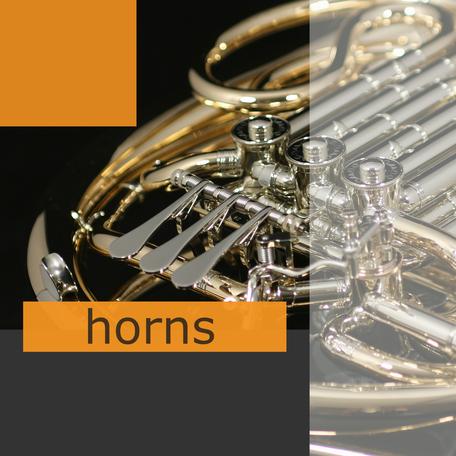 Ricco Kühn horns