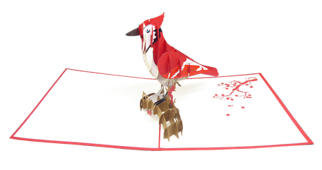 Carte pop-up oiseau Cardinal - geai rouge