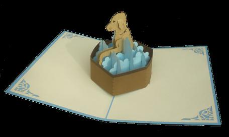 Carte pop-up Chien dans son bain - Carte kirigami chien