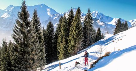 Schönkahler Tirol Tannheimer Tal Allgäu Wandern mit Hund Bergurlaub mit Hund