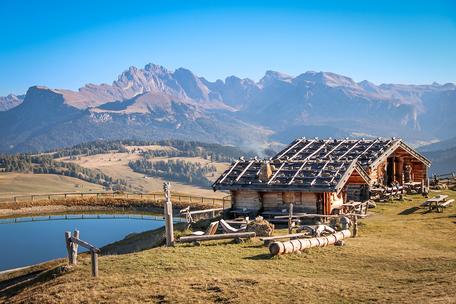 Edlweißhütte Seiser Alm Seis Compatsch Bergurlaub mit Hund Wandern in Südtirol