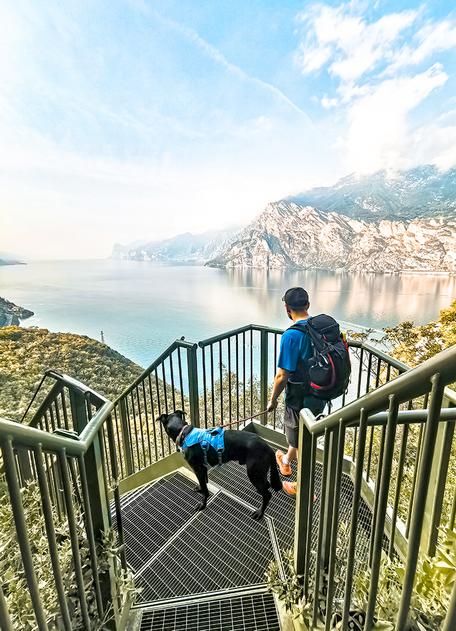 Bergurlaub mit Hund, Wandern mit Hund, Urlaub mit Hund , Wandern am Gardasee