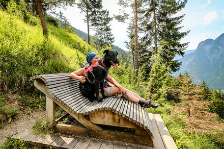 Tirol Wandern Achensee