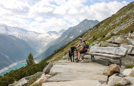 Bergurlaub mit Hund Urlaub mit Hund Wandern mit Hund  Zillertal