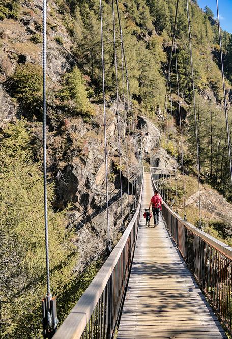 Hängebrücke am Meraner Höhenweg Südtirol, Bergurlaub mit Hund, Wandern mit Hund, Urlaub mit Hund , Wandern in Südtirol
