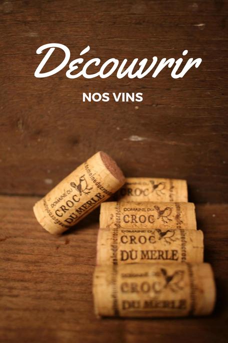 vin bouchon loire degustation fiche technique découvrir