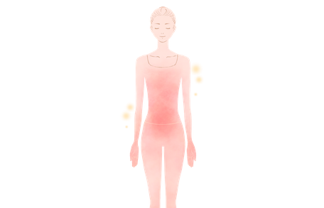 女性の基礎代謝