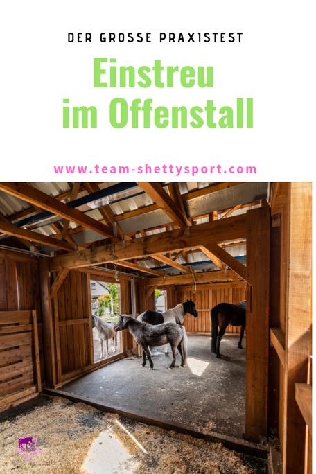 Der große Praxistest! Einstreu im Offenstall - was kann die gängige Pferdeeinstreu im Offenstall leisten?