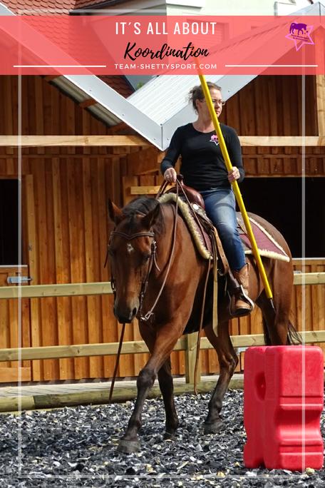 Koordination, Balance und Gleichgewicht bei Pferd und Mensch