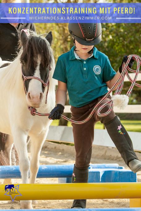 """Pferde können Kindern helfen, ihre Konzentrationsfähigkeit zu schulen. Bei """"Wieherndes Klassenzimmer - mit KKP zum Lernerfolg"""" lernst Du, wie Du ein Konzentrationstraining mit Pferd sinnvoll und strukturiert umsetzt."""