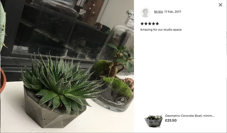 Geometric Concrete Bowl PASiNGA Hand Cast Planter With Five Star Customer Review
